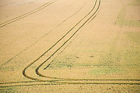 Field with tire marks