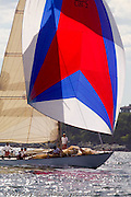Equus, W Class, Joel White design, the Best Life Museum of Yachting Classic Yacht Regatta