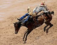 Bareback Rider DAVID JOHN WORSFOLD scores an 84 riding R4 KID ROCK BR, Championship Sunday, 29 July 2007, Cheyenne Frontier Days
