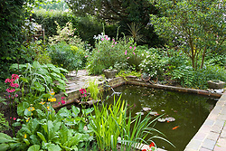 The pond area with primulas in the foreground
