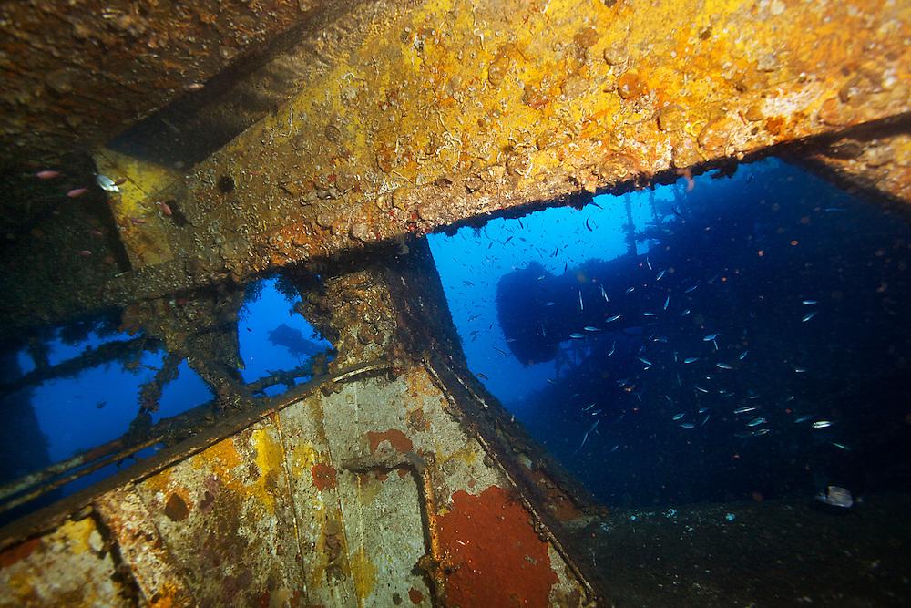 26/Octubre/2013 Islas Baleares. Ibiza<br /> Im&aacute;genes submarinas en el pecio del Don Pedro con Subfari.<br /> <br /> &copy;&nbsp;JOAN COSTA
