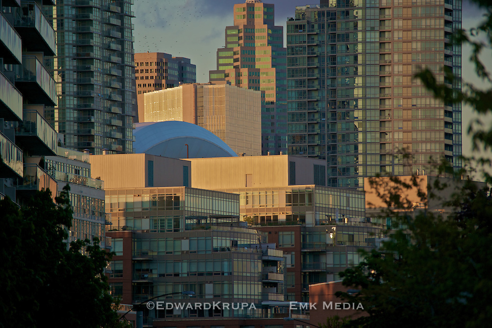 Condominiums and office buildings in Toronto's harbourfront.