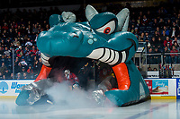 KELOWNA, CANADA - MARCH 9:  Roman Basran #30 of the Kelowna Rockets enters the ice against the Kamloops Blazers on March 9, 2019 at Prospera Place in Kelowna, British Columbia, Canada.  (Photo by Marissa Baecker/Shoot the Breeze)