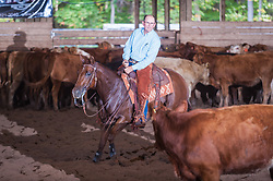 September 24, 2017 - Minshall Farm Cutting 6, held at Minshall Farms, Hillsburgh Ontario. The event was put on by the Ontario Cutting Horse Association. Riding in the $2,000 Limited Rider Class is Al Garniss on Qb Tilly Highbrow Cd owned by the rider.