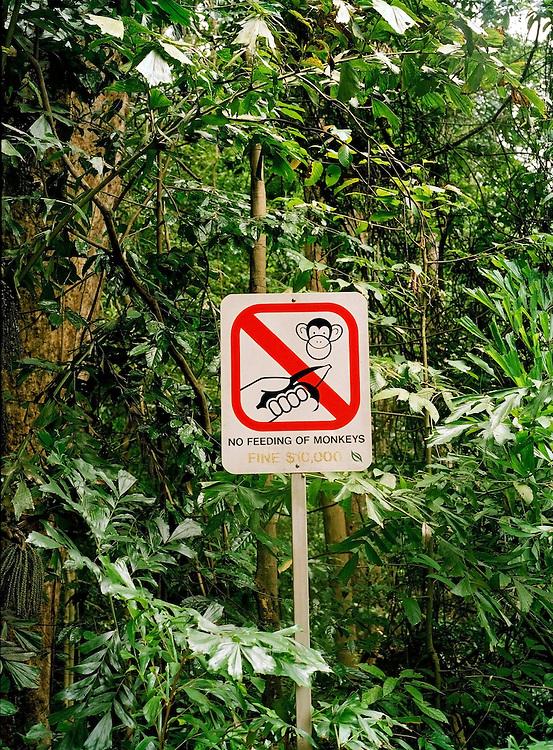 Bukit Timah Nature Preserve sign: Don't Feed the Monkeys