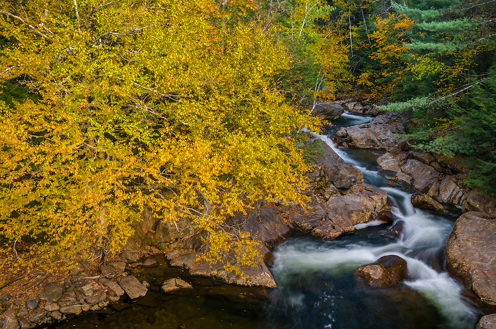 Water flows through rocks in fall forest, viewed from above, Woodstock, NH