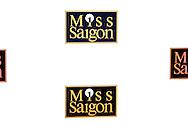 UTRECHT - In het Beatrix Theater is de premiere van de musical Miss Saigon met de nieuwe cast gepresenteerd.