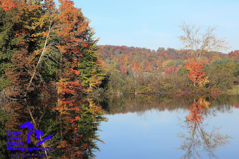 Another stunning view of a Wexford County flood pond that I captured in the autumn of 2013.