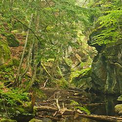 Falls Brook in Royalston, Massachusetts.