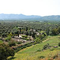 56 Titus