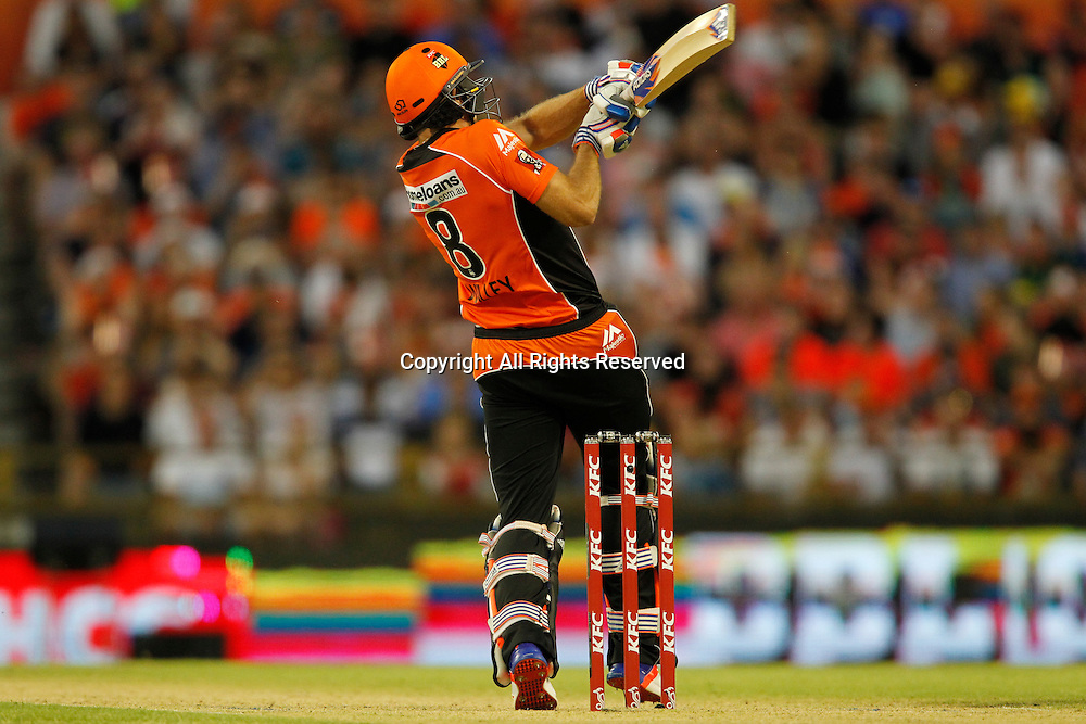 23.12.2016. WACA Ground, Perth, Australia. BBL Cricket League. Perth Scorchers versus Adelaide Strikers. David Willey plays a pull shot during his innings.