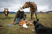 Lockhart Cattle Company, Jackson, Wyoming<br /> Photo by David Stubbs