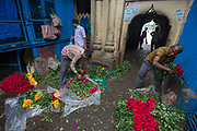 Malik Ghat wholesale flower market lies on the East bank of the Hooghly River below the Howrah Bridge in Calcutta, West Bengal.