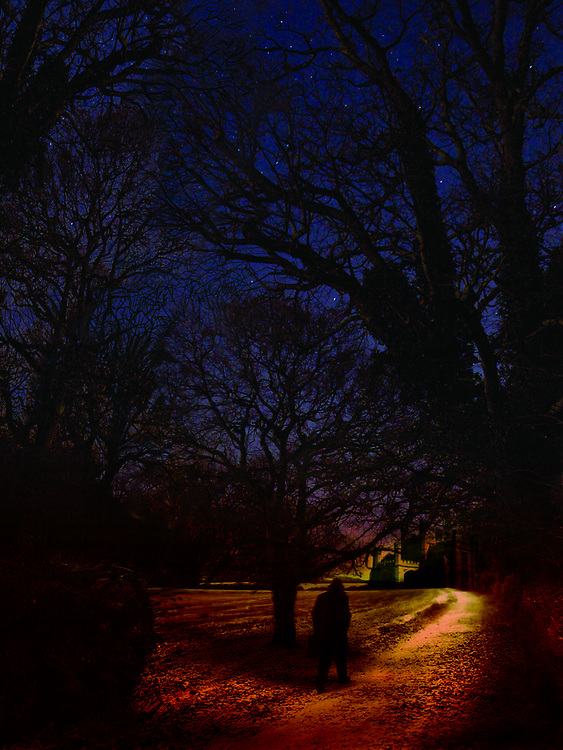 A man walks along a moonlit path to an old gothic building