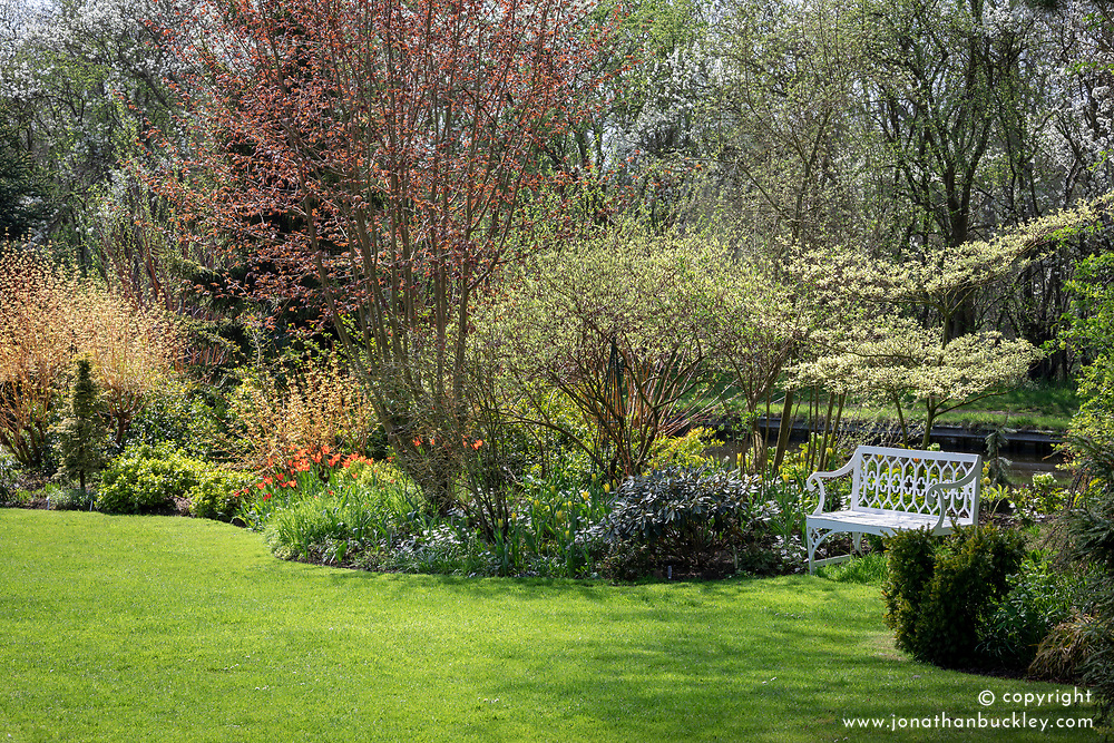 Bench and curving spring border in John Massey's garden with fresh spring leaves emerging on trees and well kept lawn.