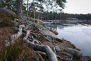 Vid Vitttjärn även kallad Trollsjön