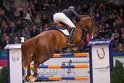 Hendrix Michel, (NED), Don Diablo HX<br /> VHO Trofee springen<br /> KWPN Hengstenkeuring - 's Hertogenbosch 2016<br /> © Hippo Foto - Dirk Caremans<br /> 04/02/16