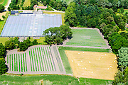 Nederland, Limburg, Gemeente Maasgouw, 26-06-2014; tuinderij  met kassen en akkers met groentebedden.<br /> Market garden with greenhouses and fields with vegetable beds.<br /> luchtfoto (toeslag op standaard tarieven);<br /> aerial photo (additional fee required);<br /> copyright foto/photo Siebe Swart.