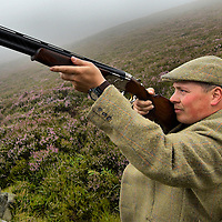 The Head Game keeper Gavin Hannam  of Glen Lethnot estate checks the guns.in the build up  to the Glorious 12th, the official start of the red grouse shooting season (this year Monday 13th August)  ANGUS, SCOTLAND AUG 10 ..The Glorious Twelfth is usually used to refer to August 12, the start of the open season for grouse shooting in the United Kingdom. This is one of the busiest days in the shooting season, with large amounts of game being shot. It is also a major boost to the rural economy. ..Since the start of the season traditionally does not begin on a Sunday, it is sometimes postponed to August 13, as in 2001 . In recent years, the event has been hit by hunt saboteurs, the 2001 foot and mouth crisis (which further postponed the date in affected areas ) and the effect of sheep tick and the gut parasite Trichostrongylus tenius...The Game Conservancy Trust conducts scientific research into Britain's game and wildlife. Advising farmers and landowners on improving wildlife habitat and lobbying for agricultural and conservation policies based on science..Many of their  supporters take part in field sports.