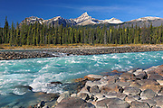 Athabasca River and the Canadian Rocky Mountains<br /> Jasper National Park<br /> Alberta<br /> Canada
