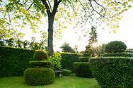 Sunrise in the Topiary Garden at the Laskett Gardens, Much Birch, Herefordshire, UK