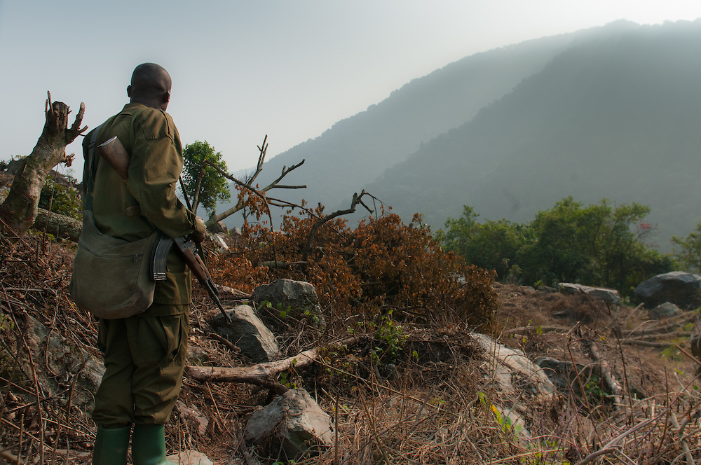 Park ranger with his gun, Bwindi Impenetrable Forest, Uganda.