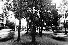 Guadalajara, Bicis Blancas