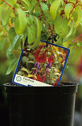 A commercial plant label