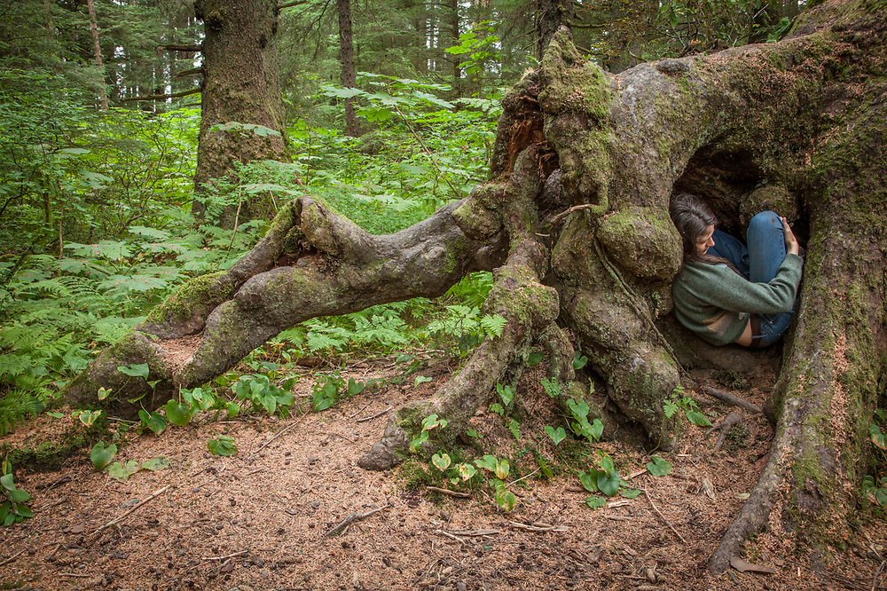 Participant in the Sitka Arts and Science Festival, Catherine Reynolds hides inside a tree deep in the forest at Totem National Historic Park