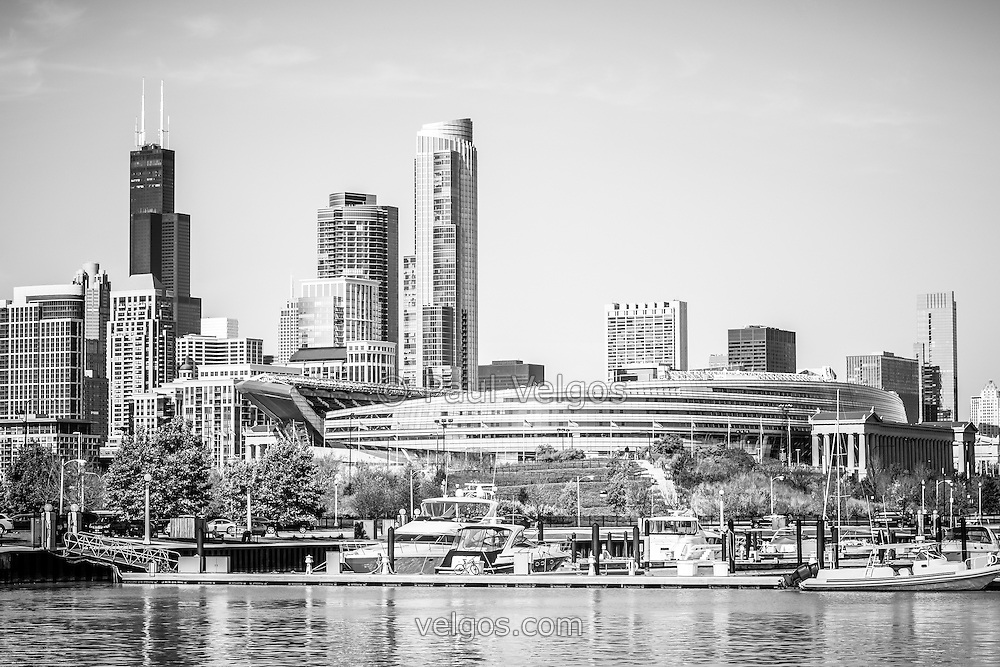 Black And White Picture Of Chicago Skyline Photo Includes Soldier Field Willis Tower