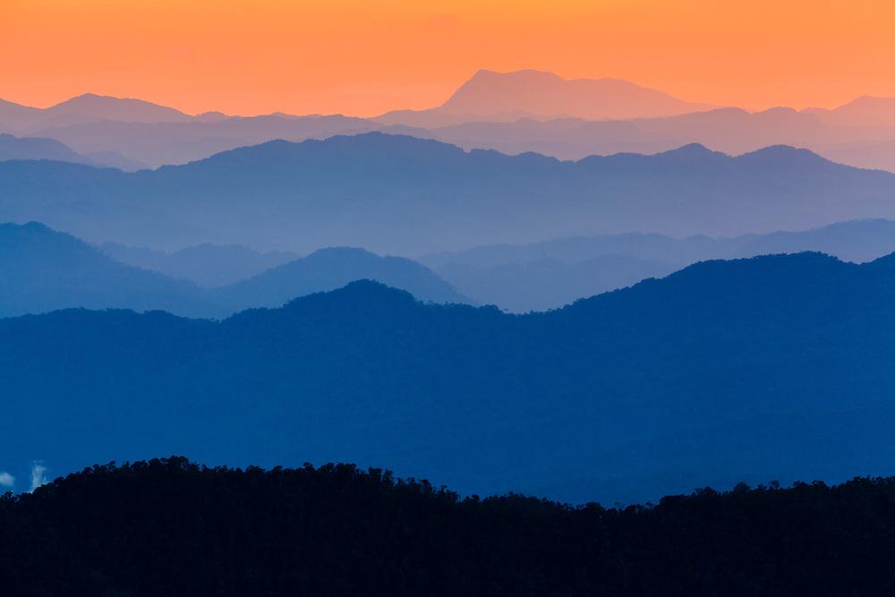 Rainforest landscape at sunset. Bach Ma National Park. Vietnam.