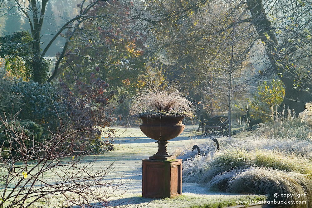 Terracotta urn on a plinth on a frosty winter's morning in John Massey's garden. Carex comans 'Bronze form'. Grasses border, lawn and trees beyond. Design: John Massey, Ashwood Nurseries