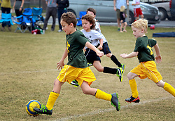 16 November 2013. Carrolton Boosters Soccer. New Orleans, Louisiana. <br /> U8 Jesters v Bulls.<br /> Photo; Charlie Varley