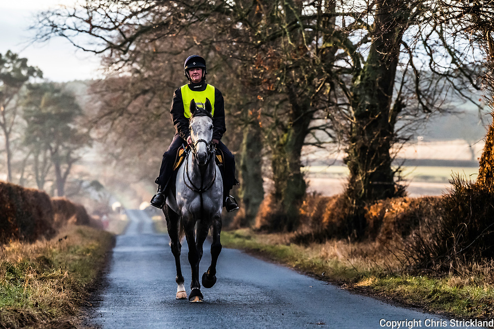Oxnam, Jedburgh, Scottish Borders, UK. 12th January 2018. A point to point racehorse doing some light road work with owner and trainer Karen Lynn on a still mild morning in the Borders.