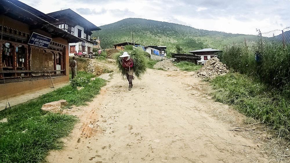 People, Bhutan <br /> <br /> Full photoessay at http://xpatmatt.com/photos/bhutan-photos/