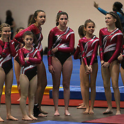 Young gymnasts wait for competition during competition at the 21st American Invitational 2014 competition at the XL Centre. Hartford, Connecticut, USA. USA. 31st January 2014. Photo Tim Clayton