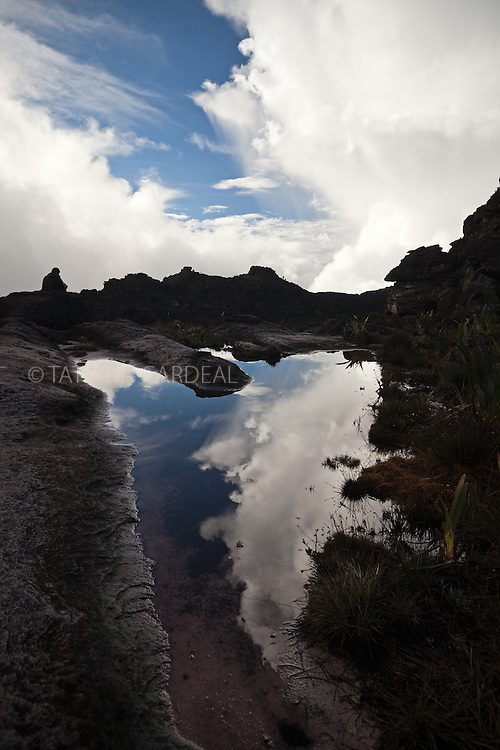At Roraima Mount top, walking between clouds.