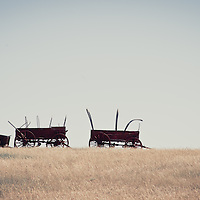 abandon waggons on the prairie