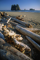 Sea Stacks at Ruby Beach, Olympic National Park, Washington, US