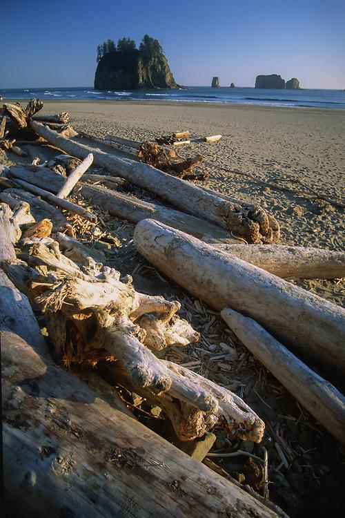 Sea Stacks at Ruby Beach, Olympic National Park, Washington, US
