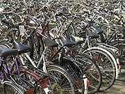 close up of many parked bicycles