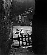 Backyard in Sheffield slums, 1957