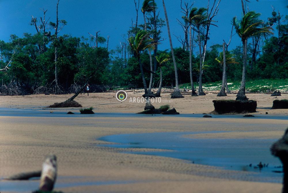 Ilha do Marajo; Para; Brasil. 1995.Mangue Seco. Manguezal (tambem chamado mangal e mangue) e um ecossistema costeiro, de transicao entre os ambientes terrestre e marinho, encontrado em regioes tropicais e subtropicais. O manguezal e um ecossistema complexo e um dos mais produtivos do planeta. Caracteristico de regioes tropicais e subtropicais, esta sujeito ao regime das mares, dominado por especies vegetais tipicas, as quais se associam a outros componentes vegetais e animais./ Mangrove. Mangroves are woody trees or shrubs that grow in coastal habitats or mangal (Hogarth, 1999), for which the term mangrove swamp also applies. Mangrove plants are found in depositional coastal environments where fine sediments, often with high organic content, collect in areas protected from high energy wave action..Foto © Elena Vetorazzo/Argosfoto