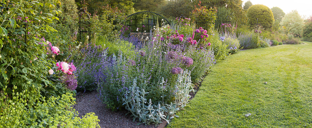 A beautiful border filled with fragrant roses and colourful herbaceous plants at Dorothy Clive Garden, Staffordshire.  Photographed in June.