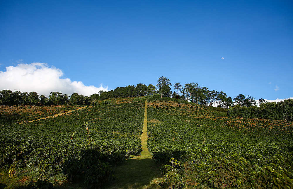 Hacienda Alsacia during the 2016 Starbucks Origin Experience for Partners. Photographed in January 2016. (Joshua Trujillo, Starbucks)