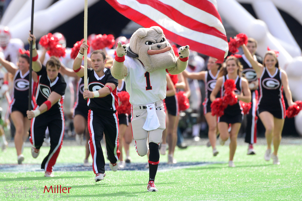 Georgia Bulldogs mascot Hairy Dog leads the team on to the field prior to the Bulldogs 45-31 win over the Nebraska Cornhuskers in the Capital One Bowl at the Florida Citrus Bowl on Jan 1, 2013 in Orlando, Florida. ..©2012 Scott A. Miller..