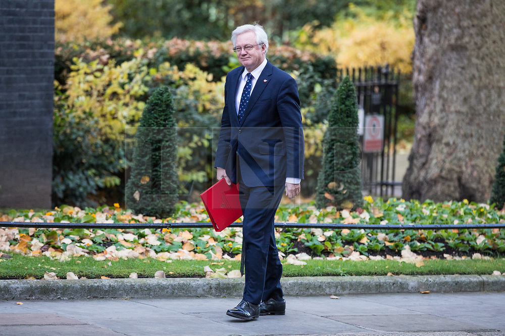 © Licensed to London News Pictures. 13/11/2017. London, UK. Secretary of State for Exiting the European Union David Davis arrives on Downing Street for a meeting with European business leaders in which they will voice their concerns about the future of UK-EU trade. Photo credit: Rob Pinney/LNP
