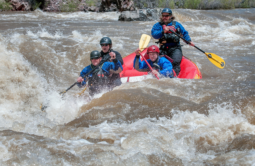 em051617a/jnorth/From left, Will Graves, Daisy Graves, Robert Bell and John Adams, all with the Santa Fe County Fire Department, raft through the rapid know as Toilet Bowl on the Rio Grande Racecource on their day off, Tuesday May 16, 2017. The river is running at over 3100 cubic feet per second, almost twice its average. (Eddie Moore/Albuquerque Journal