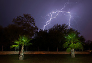 Lightning storm over lightpainted palm trees, Matehuala, San Luis Potosí, Mexico.