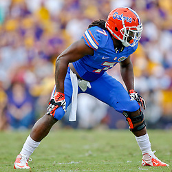 Oct 12, 2013; Baton Rouge, LA, USA; Florida Gators linebacker Ronald Powell (7) against the LSU Tigers during the second half of a game at Tiger Stadium. LSU defeated Florida 17-6. Mandatory Credit: Derick E. Hingle-USA TODAY Sports